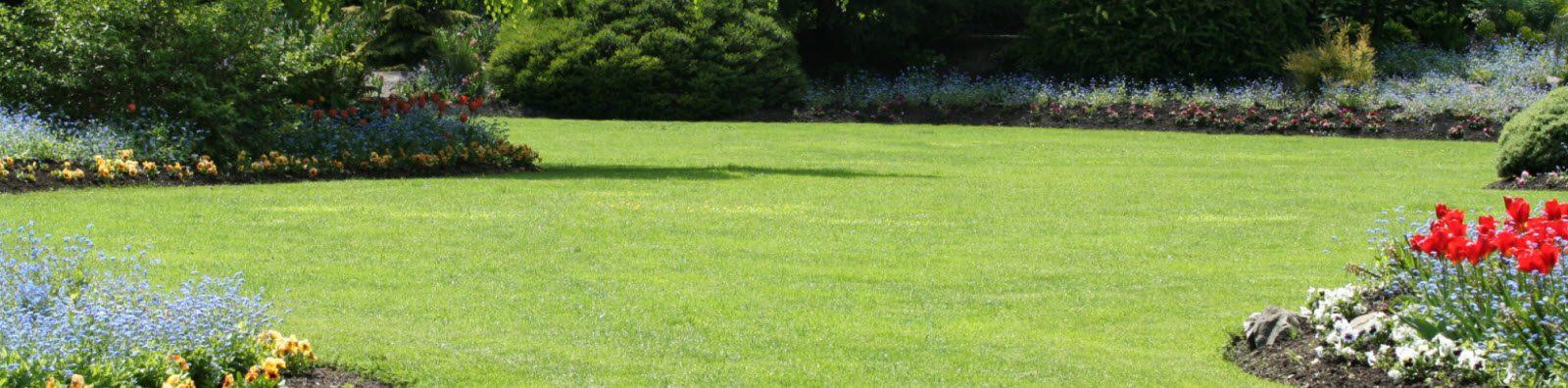 Organic Lawn Care